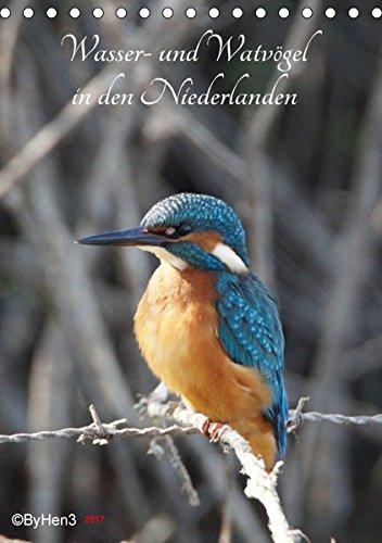 Wasser- und Watvögel in den Niederlanden (Tischkalender 2017 DIN A5 hoch): Die wunderbare Schönheit der Natur (Monatskalender, 14 Seiten ) (CALVENDO Tiere) -