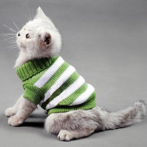 Pullover für Katzen, Winter-Kostüm für Haustier-Katzen, Jumper, stark dehnbar, bequem für kleine Katzen, Hunde, Chihuahua, Mops (Kitten Katze Kostüm)
