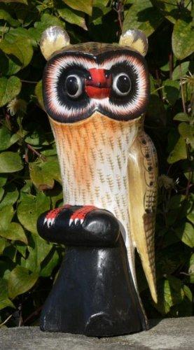 EULE Vogel Tier Holz Kautz Uhu Owl Eule19