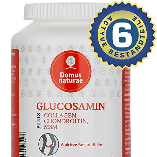 GLUCOSAMIN PLUS COLLAGEN, CHONDROITIN, MSM ist Komplex von 6 aktiven Stoffen, 60 Tabletten