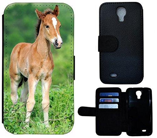 Flip Cover Schutz Hülle Handy Tasche Etui Case für (Apple iPhone 5 / 5s, 1532 Katze Kätzchen Katzenbaby Weiß Schwarz) 1531 Fohlen Pferd Tier Braun