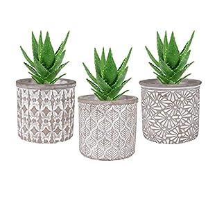 T4U 10.5CM Macetas para Cactus de Cemento con Plato de Bambú Paquete de 3, Maceteros Pequeños para Suculento Plantas…