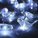 Prevently 1,2 Meter 10LED Kleiner Vogel Lichterkette Batteriebetriebene String Lights Wasserdichte Für Hochzeit Party Romantische Deko (White)