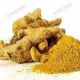 Curcumin Powders - Best Reviews Guide