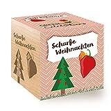 Feel Green Green Celebrations Ecocube, Chili Habanero-Xmas, Holzwürfel Mit Hochwertiger Lasergravur Scharfe Weihnachten, Nachhaltige Geschenkidee, 100% Eco Friendly, Anzuchtset, Made in Austria