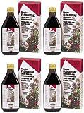 (4 PACK) - Floradix - Floravital Yeast And Gluten Fr SAL-1718 | 500ml | 4 PACK BUNDLE