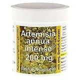 ARTEMISIA ANNUA intense 200 Kapseln 90 St Kapseln