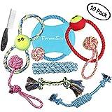 Futuresky Spielzeug für Hündchen 10er Geschenkset mit einer Vielzahl von Schleppseil Wurfscheibe Chew Chase Bälle und Quietschen Spielzeug für kleine bis mittelgroße Hunde