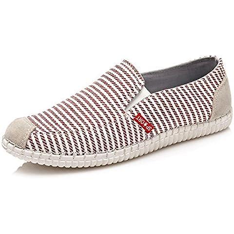Zapato respirable ocasional de los hombres/ zapatos de moda rayas/Calzado cómodo