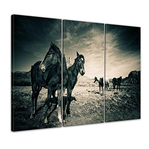 Kunstdruck - Pferde am Colorado Canyon - 90x60 cm 3tlg - Bilder als Leinwanddruck - Wandbild von Bilderdepot24 - Tierwelten - Amerika - Natur - schwarzweiß - Pferdeherde am Canyon