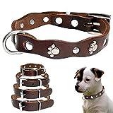 WHFDRHCWXQ Haustierhalsband Haustier Hundehalsbänder einstellbar für kleine mittelgroße Hunde Welpen Chihuahua Pitbull Halsband Brown XXS XS SM, XXS