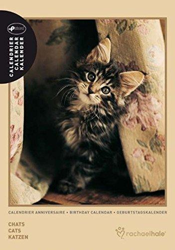 tagskalender Katze (Rachael Hale)