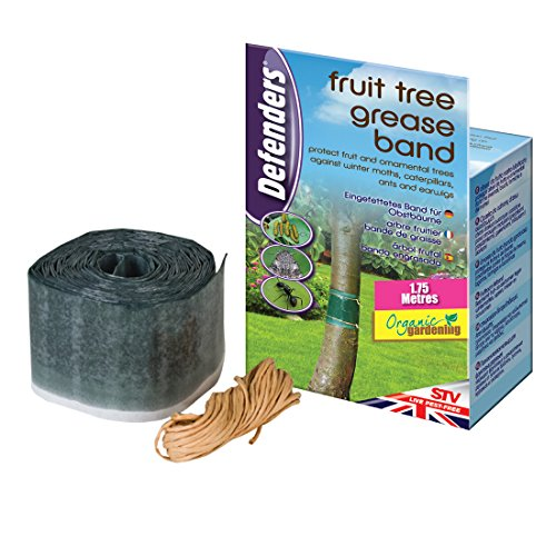 defenders-fruit-tree-grease-band-poison-free-protection-from-insects-use-on-fruit-and-ornamental-tre