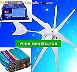 Gowe Boot Windkraftanlage 300W 220V/110W/230V/240V (Wind Generator 300W + controller300W + 300W Pure Sinus-Wechselrichter)