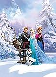 Fototapete Kindertapete FROZEN WINTERLAND 254x184 Disney Eiskönigin Elsa und Anna