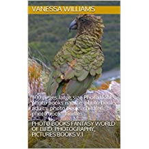 Photo books Fantasy World of Bird, Photography, Pictures Books V.1: 100 pages large size Photo books, photo books nature, photo books adults, photo books ... photo books kindles (English Edition)