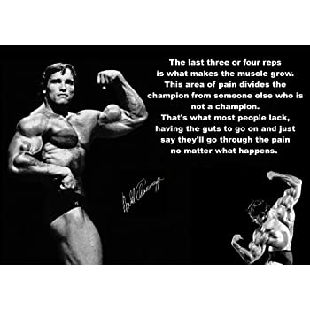 Inspirational Motivational Quote Sign Poster Print Picture Arnold  Schwarzenegger Signed SPORTS,LIFE,BOXING,
