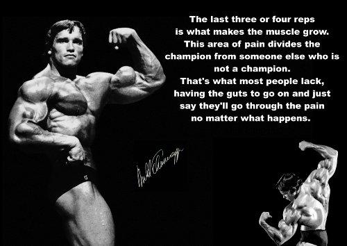 Inspirierendes Zitat, Schild Poster Kunstdruck Arnold Schwarzenegger, signiert, LIFE, BOXING, Sport, Fahrrad, Sport, BODYBUILDING, TRIATHLON, BASKETBALL, Fußball, RUGBY, Schwimmen, MARTIAL ARTS, ETC