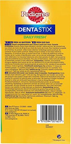 Pedigree DentaStix Fresh Hundesnack für große Hunde (25kg+), Zahnpflege-Snack mit Eukalyptusöl und Grüner Tee-Extrakt, 4 Packungen je 28 Stück (4 x 1,08 kg) - 6
