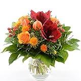 Blumenversand - Blumenstrauß Red Star - mit Amaryllisblüte - mit Gratis Grußkarte zum Deutschlandweit versenden