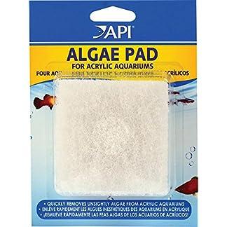 API Hand Held Algae Pad API Hand Held Algae Pad 51UP5KTz8XL