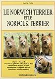 Le Norwich et le Norfolks-terrier