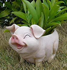 Wonderland Smiling Pig Flower Pot ( Garden Pots , Planter , Planters, Table Decor, Gifting , Garden Decor, Home Decoration)