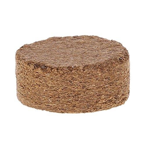 Xuniu Noix de Coco Fibre De Coco Granulés Nutrient Sol Léger Plante Base Compressée Jardin 4x1.5cm