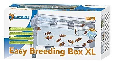 Superfish Easy Breeding Box (Aufzuchtbecken) XL