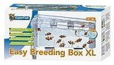 Breedingbox mit zusätzlichem Wasserdurchlauf