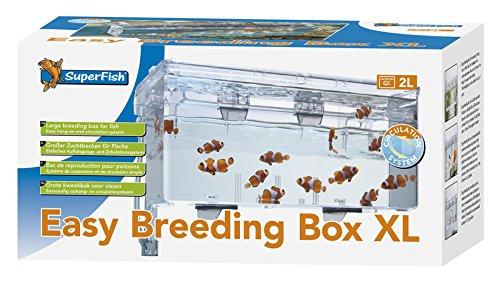 Superfish Easy Breeding Box (Aufzuchtbecken) XL -
