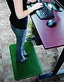Andersen 4443042232Sie Stand Up Ermüdungsmatte für trockene Bereiche, 55,9x 81,3cm 5/20,3cm Stärke, dunkelgrün