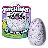 Spin Master 6034333 - Hatchimals - Pengualas Version 2 (green-pink assorted color)