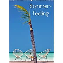 Sommerfeeling (Wandkalender 2018 DIN A2 hoch): Sommerfeeling - 13 traumhafte Kalenderfotos aus der Karibik, die Lust auf einen sofortigen Urlaub ... [Kalender] [Apr 01, 2017] Hornecker, Frank