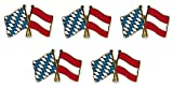 Yantec Freundschaftspin 5er Pack Bayern Österreich Pin Anstecknadel Doppelflaggenpin