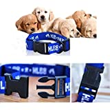 Sage Square Adjustable Anti Mosquitoes, Anti Fleas, Anti Tick Collar For Dog / Puppy / Cat / Kitten (Blue)