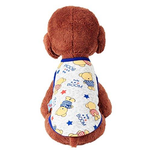 Niedliche Cartoon Tiere Haustier Kleidung, Hmeng Samt Welpen Kleidung Pullover Kleines Baby Welpen Shirt Weiche Haustier Katze Mäntel (XXS, Grauer (Welpe Kostüm Bär Tragen)