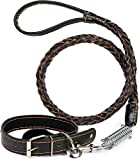 Puccybell Leder Hundehalsband mit Nieten und Hundeleine (1,2m) im Set, Halsband für Hunde und geflochtene Leine mit Ruckdämpfer HLS003 (L, Schwarz)