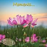 Moments 2019: Kalender 2019