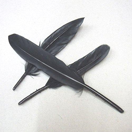 5cm Natürlich Feder Schwarz Lot - Posten - Menge 300 Stück - 4720 DIY Schmuckherstellung Zubehör Halskette Armband Basteln Selbermachen AMDE (Fasan Vogel Feder Maske)