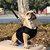 #10: Generic Breathable Mesh Pet Puppy Dog Walking Collar Chest Strap Harness Black S-14011339MG