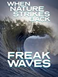 When Nature Strikes Back: Freak Waves