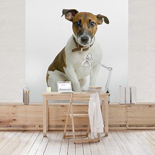 fotomural-innocent-look-mural-cuadrado-papel-pintado-fotomurales-murales-pared-papel-para-pared-foto