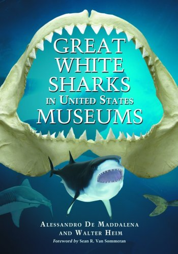 Great White Sharks in United States Museums por Alessandro De Maddalena