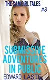 Submissive Adventures in Public: Erotic BDSM (The Cam Girl Tales Book 3) (English Edition)