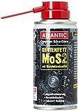 Atlantic 2172004000 Kettenfett, Schwarz, 10 x 10 x 15cm
