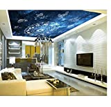 Deckenfresko 12 Constellation Ceiling Murals Wandbild Wohnzimmer Studie Schlafzimmer Decke Wallpaper De Parede 3D HD Home Decor
