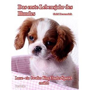 Das erste Lebensjahr des Hundes Lasse - ein Cavalier King Charles Spaniel erzählt: Das Buch vom Hund - Welpe und Junghund