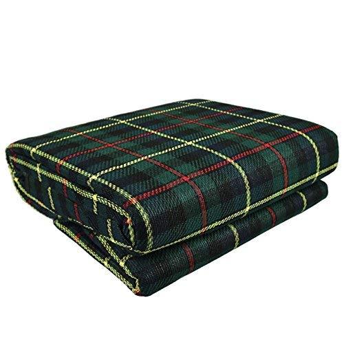 ASAB extra-große Picknickdecke mit wasserdichter Rückseite, 300 x 220 cm, Zeltteppich, XXL-Strandteppich, Jumbo-Größe, wasserabweisend, Gartenmatte, grün