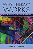 Why Therapy Works: Using Our Minds to Change Our Brains (Norton Series on Interpersonal Neurobiology)